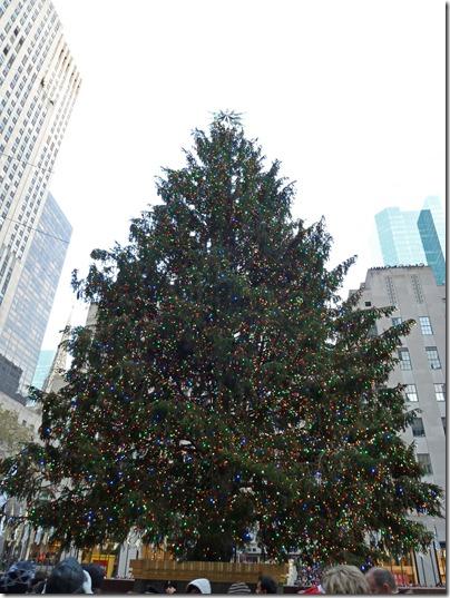Rockefeller-tree