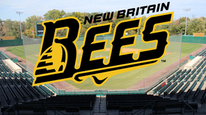 (New Britain Bees image)